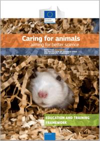 Education and Training Framework